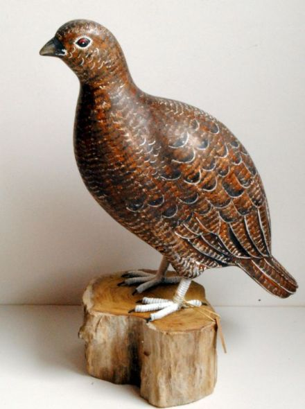 Archipelago Female Grouse